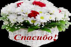 http://s8.uploads.ru/t/Ix0Sh.png