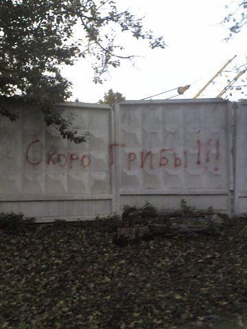 http://s8.uploads.ru/t/JCnlY.jpg