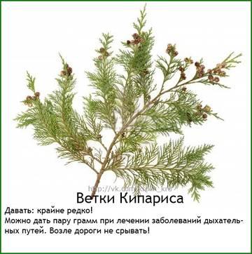http://s8.uploads.ru/t/JWsuy.jpg