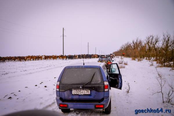 http://s8.uploads.ru/t/Jhzao.jpg