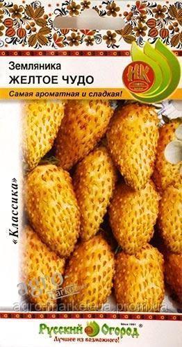 http://s8.uploads.ru/t/Jt1zB.jpg