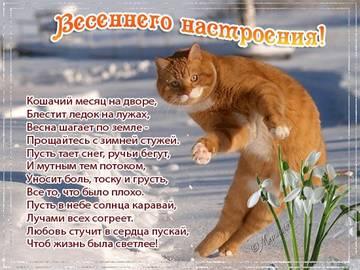 http://s8.uploads.ru/t/KTAD1.jpg