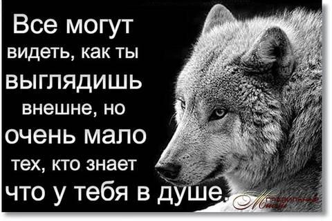 http://s8.uploads.ru/t/Kb06Z.jpg