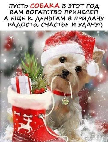 http://s8.uploads.ru/t/Lv0BK.jpg