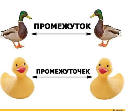 http://s8.uploads.ru/t/M4Cez.jpg