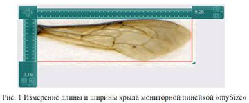 http://s8.uploads.ru/t/M9JwG.jpg
