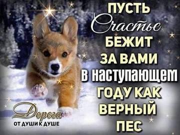 http://s8.uploads.ru/t/MPkHF.jpg