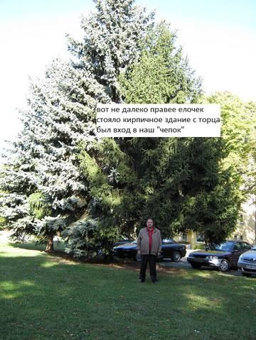 http://s8.uploads.ru/t/OXgIy.jpg