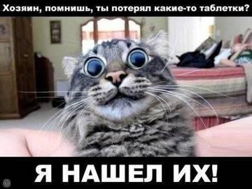 http://s8.uploads.ru/t/OoUej.jpg