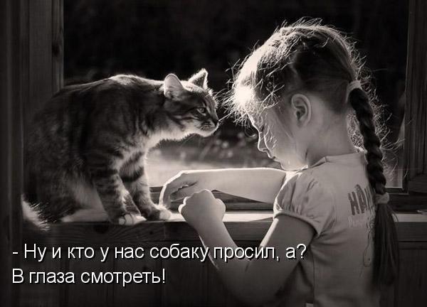 http://s8.uploads.ru/t/OqRju.jpg