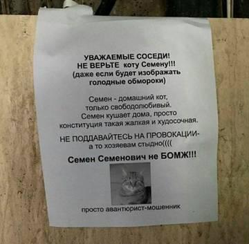 http://s8.uploads.ru/t/PVIBL.jpg