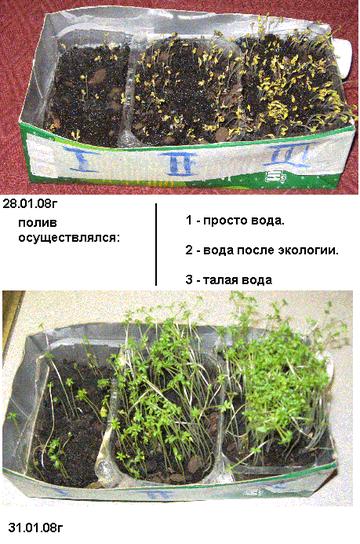 http://s8.uploads.ru/t/PwlA1.png