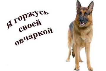 http://s8.uploads.ru/t/QaC0W.jpg