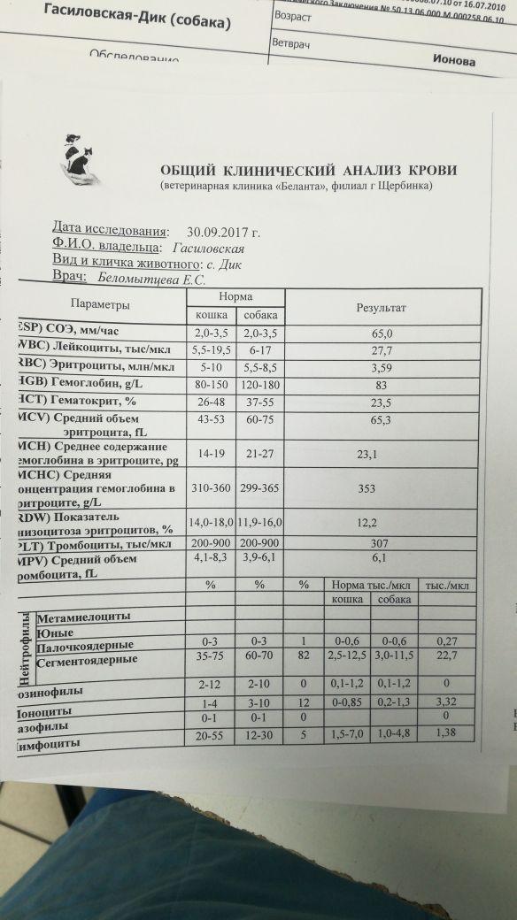 http://s8.uploads.ru/t/QdpHo.jpg