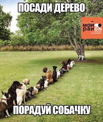 http://s8.uploads.ru/t/QpK6e.jpg
