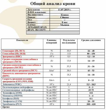 http://s8.uploads.ru/t/QugPN.jpg