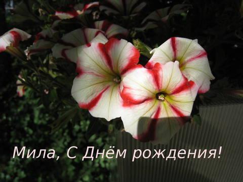 http://s8.uploads.ru/t/RJKOY.jpg