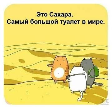 http://s8.uploads.ru/t/RelHy.jpg