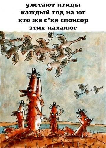 http://s8.uploads.ru/t/RuHjN.jpg