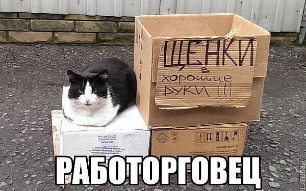 http://s8.uploads.ru/t/S92mW.jpg