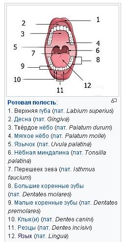 http://s8.uploads.ru/t/SuALG.jpg