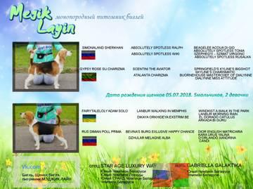 http://s8.uploads.ru/t/TjoYb.jpg