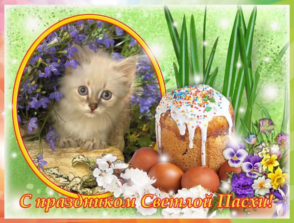 http://s8.uploads.ru/t/U4IRr.jpg