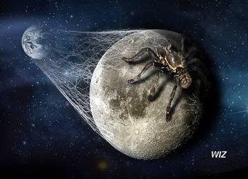 Города на Луне