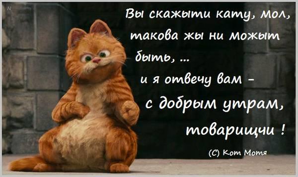 http://s8.uploads.ru/t/UAlc4.jpg