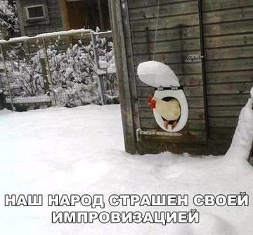 http://s8.uploads.ru/t/VNgOy.jpg