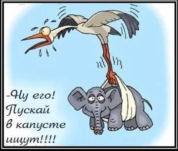 http://s8.uploads.ru/t/W83ZN.jpg