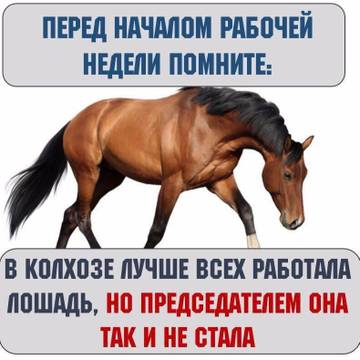 http://s8.uploads.ru/t/WktAq.jpg