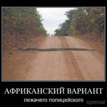 http://s8.uploads.ru/t/X1Iac.jpg