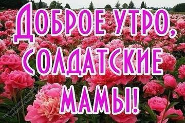 http://s8.uploads.ru/t/XZCAi.jpg