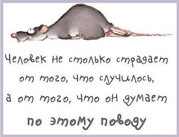 http://s8.uploads.ru/t/YAJ4X.jpg