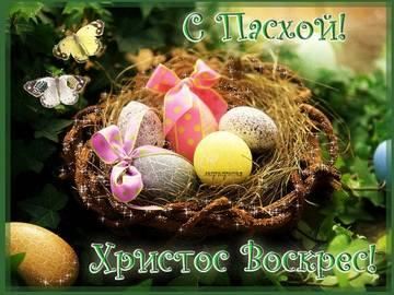 http://s8.uploads.ru/t/Yg8xk.jpg
