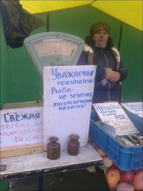 http://s8.uploads.ru/t/ZJmsV.jpg
