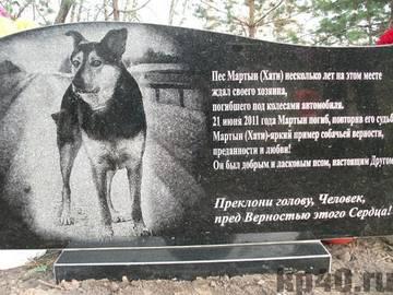 http://s8.uploads.ru/t/ZjfuQ.jpg