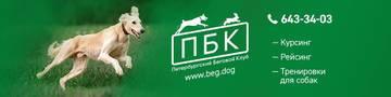http://s8.uploads.ru/t/acRMF.jpg