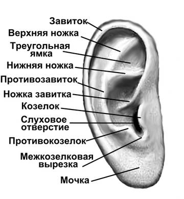http://s8.uploads.ru/t/b16ZE.jpg