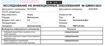 http://s8.uploads.ru/t/bMPuI.png