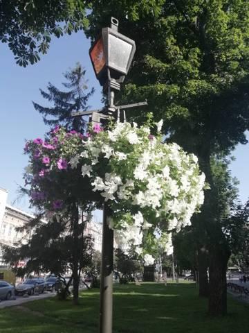 http://s8.uploads.ru/t/bT7uY.jpg