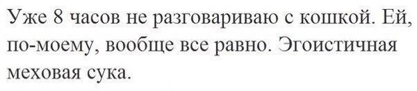 http://s8.uploads.ru/t/bUFtm.jpg