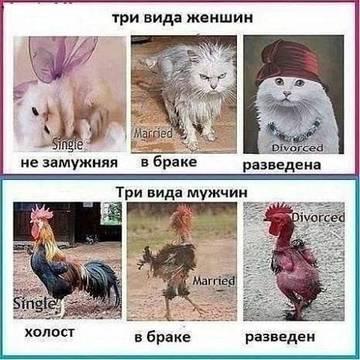 http://s8.uploads.ru/t/ba1nv.jpg