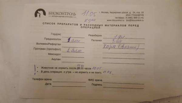 http://s8.uploads.ru/t/bnJVr.jpg