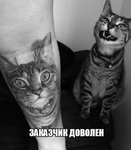 http://s8.uploads.ru/t/bsg7X.jpg