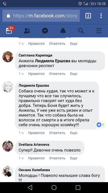 http://s8.uploads.ru/t/cJedB.png