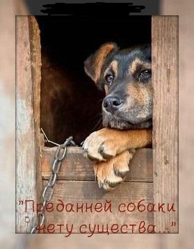 http://s8.uploads.ru/t/dBnry.jpg