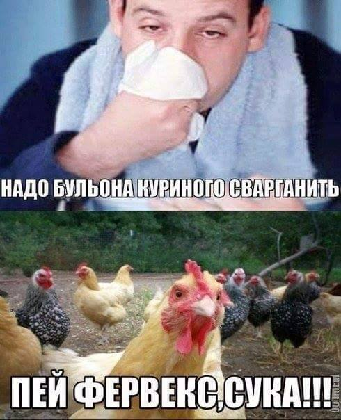 http://s8.uploads.ru/t/dvRjK.jpg