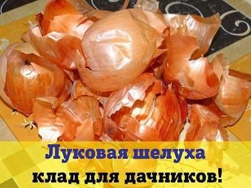 http://s8.uploads.ru/t/e7uhY.jpg